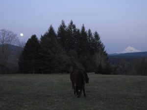 A full moon and a full view of the magic on Ross Mountain